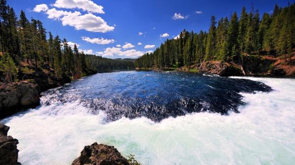 fiume yellowstone