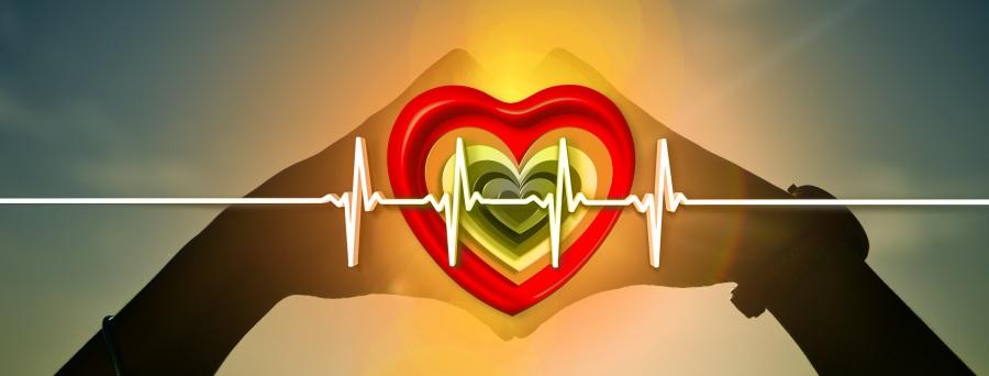 heart-1616465